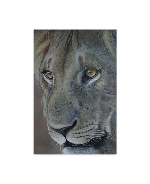 "Trademark Global Pip Mcgarry Lion King 2012 Canvas Art - 37"" x 49"""