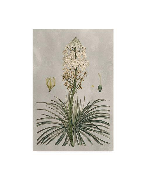 """Trademark Global Pancrace Bessa Ua Ch Tropical Varieties III Canvas Art - 20"""" x 25"""""""