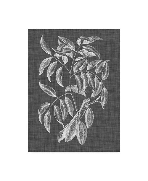 "Trademark Global Vision Studio Graphic Foliage III Canvas Art - 37"" x 49"""
