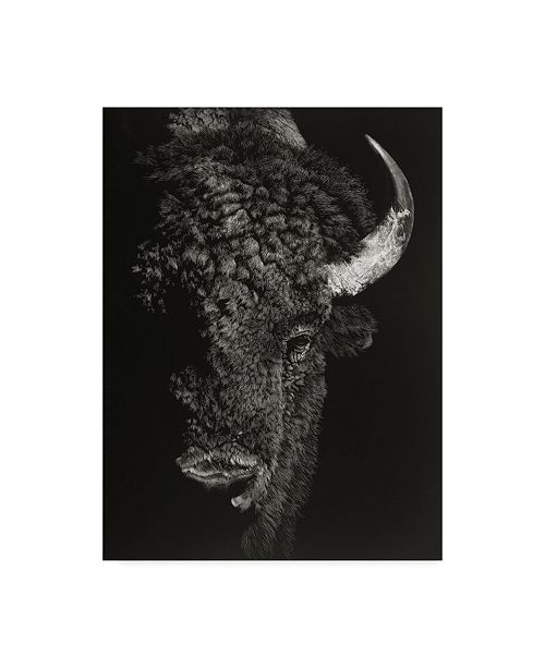 "Trademark Global Julie T. Chapman Black Glimpse I Canvas Art - 15"" x 20"""