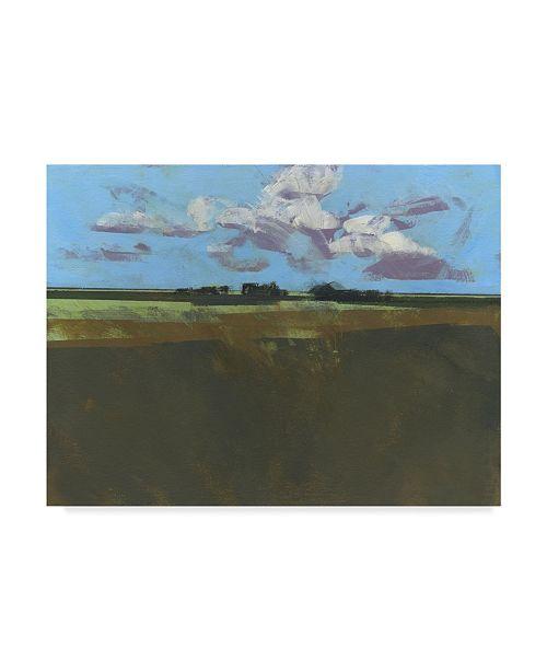 "Trademark Global Paul Bailey Early December Fields Canvas Art - 20"" x 25"""