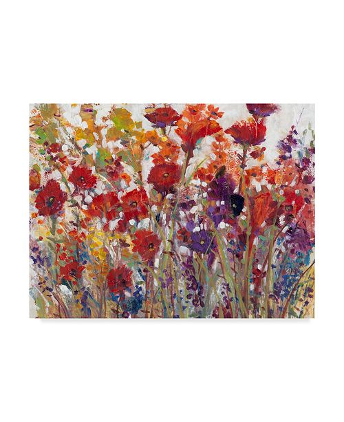 "Trademark Global Tim Otoole Variety of Flowers I Canvas Art - 15"" x 20"""