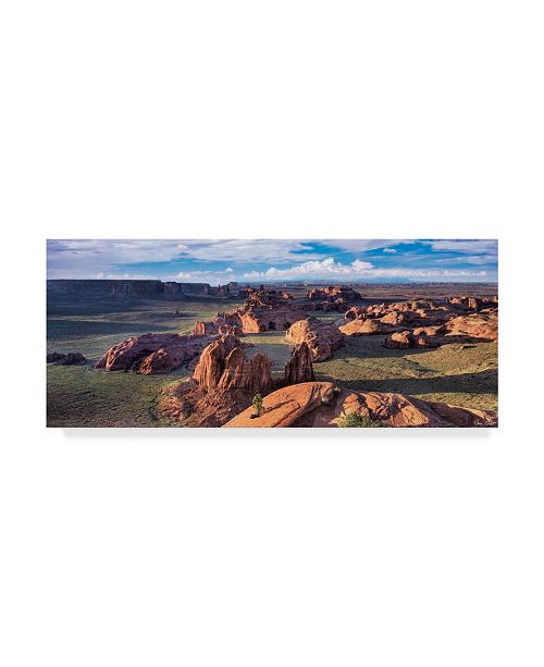 "Trademark Global David Drost Valley Beauty VIII Canvas Art - 15"" x 20"""