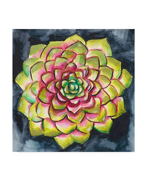 "Trademark Global Chariklia Zarris Succulent Rosette III Canvas Art - 15"" x 20"""