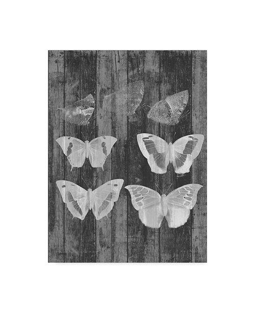 """Trademark Global Jennifer Goldberger Rustic Butterfly Chart III Canvas Art - 37"""" x 49"""""""