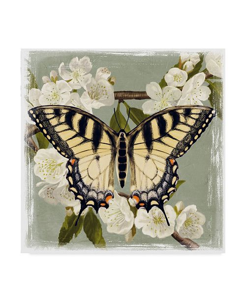 """Trademark Global Victoria Borges Butterfly Branch II Canvas Art - 27"""" x 33"""""""