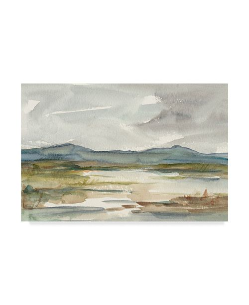 "Trademark Global Ethan Harper Overcast Wetland I Canvas Art - 37"" x 49"""