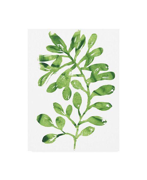 "Trademark Global June Erica Vess Emerald Tropics II Canvas Art - 37"" x 49"""