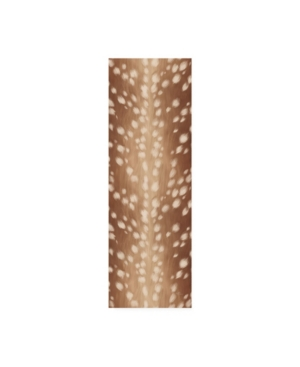 "Janelle Penner Sweet Fawn Iii Canvas Art - 37"" x 49"""