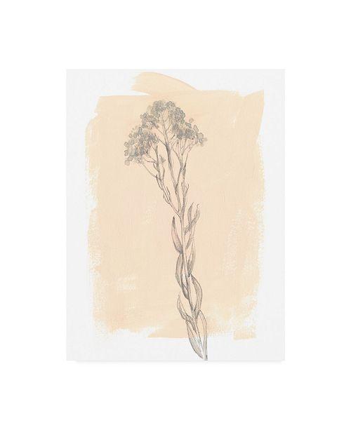 "Trademark Global Jennifer Goldberger Branch on Blush I Canvas Art - 20"" x 25"""