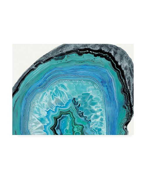 "Trademark Global Naomi Mccavitt Agate Studies II Canvas Art - 18"" x 24"""