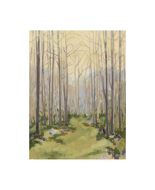"""Trademark Global Megan Meagher Delicate Forest I Canvas Art - 37"""" x 49"""""""