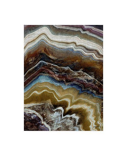 """Trademark Global John Butler Mineral Spirit III Canvas Art - 37"""" x 49"""""""