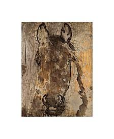 "Irena Orlov Champagne Horse II Canvas Art - 20"" x 25"""
