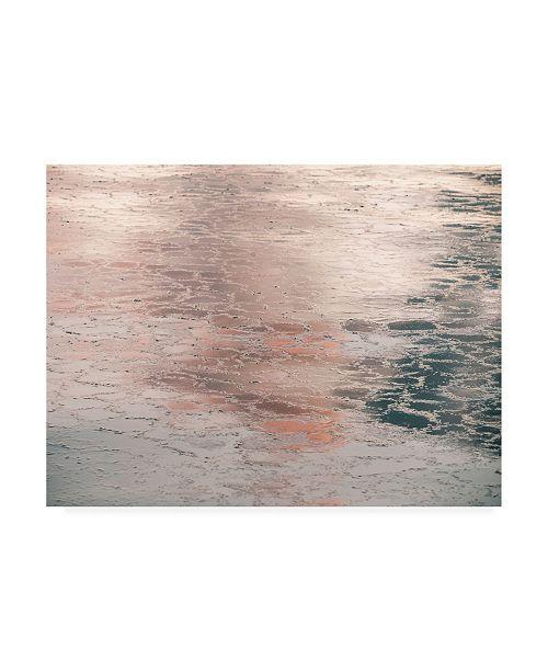 "Trademark Global PhotoINC Studio Silver Pink Light Canvas Art - 27"" x 33.5"""