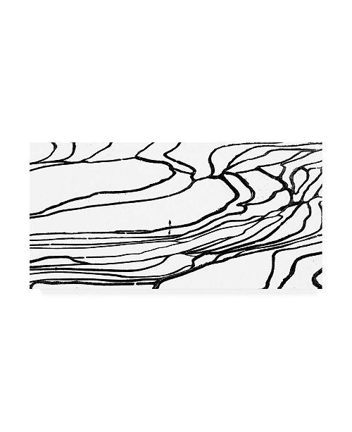 "Trademark Global Piet Flour Labyrinth Canvas Art - 36.5"" x 48"""