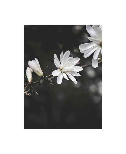 "Trademark Global Design Fabrikken White Flowers Fabrikken Canvas Art - 19.5"" x 26"""