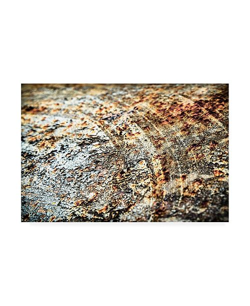 "Trademark Global PhotoINC Studio Retro Rust Canvas Art - 19.5"" x 26"""