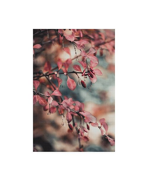 "Trademark Global PhotoINC Studio Fall Pink Branches I Canvas Art - 15.5"" x 21"""