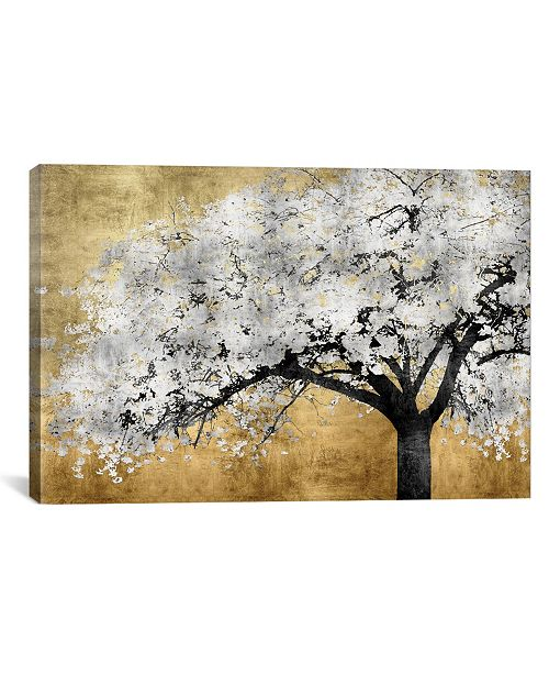 "iCanvas Silver Blossoms by Kate Bennett Wrapped Canvas Print - 18"" x 26"""