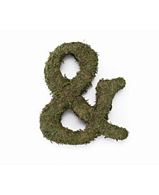 "Large 12"" Moss Monogram Ampersand"