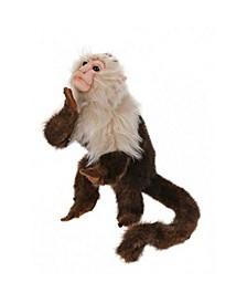 Capuchin Monkey Plush Toy