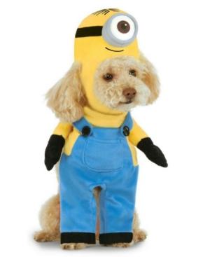 Minion Stuart Arms Pet Co Pet Costume