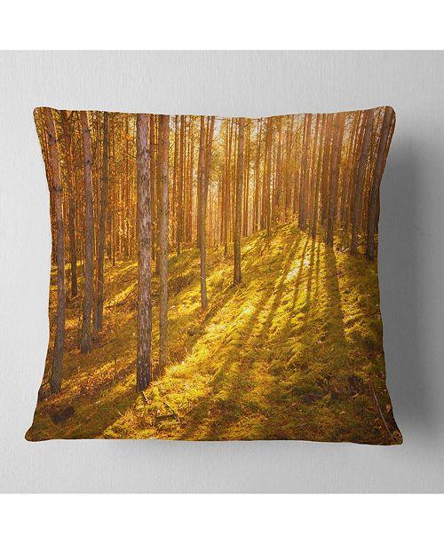"Design Art Designart Beautiful Sunrays In Thick Forest Modern Forest Throw Pillow - 16"" X 16"""