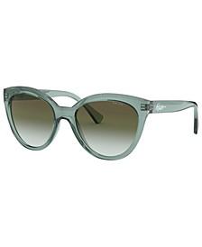 Sunglasses, RA5260 53