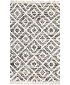 Bridgeport Home Lochcort Shag Loc2 Gray Area Rug Collection