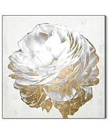 21250 Gold and Light Floral White Canvas Art Collection
