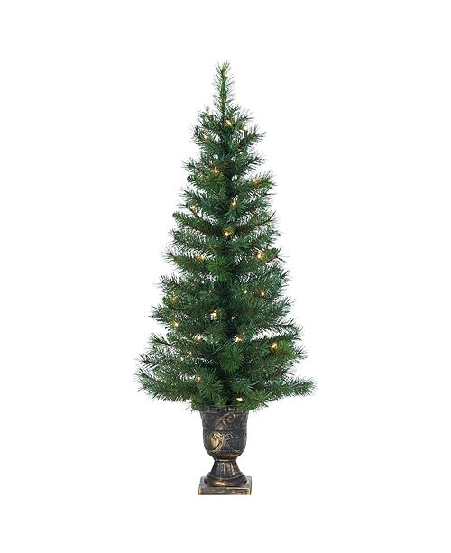 Sterling 4Ft. Potted Hard Needle Idaho Pine with 50 Clear Lights