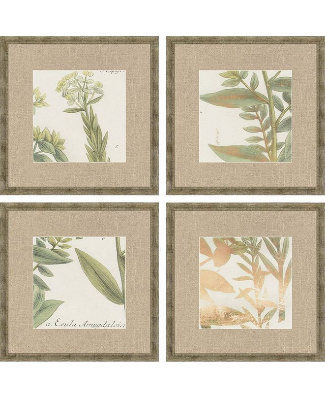 "Paragon Garden V Framed Wall Art Set of 4, 15"" x 15"""