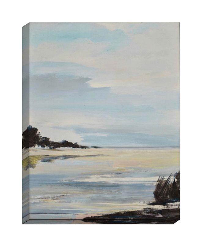 "Paragon Salt Water- Gallery Wrap Wall Art, 48"" x 36"""