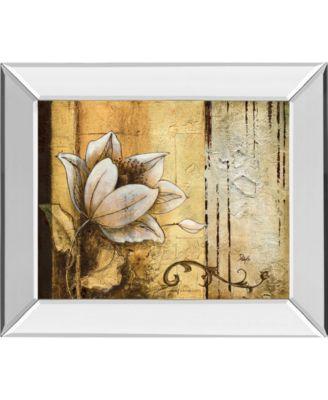 "Exotic on Gold II by Patty Q Mirror Framed Print Wall Art, 22"" x 26"""