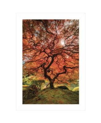 """First Colors of Fall II by Moises Levy, Ready to hang Framed Print, White Frame, 15"""" x 21"""""""
