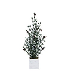 Pinecone Large Green Christmas Frosted Tree with Birch Box