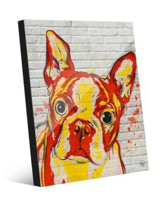 "Boston Terrier Graffiti in Orange Yellow 20"" x 24"" Acrylic Wall Art Print"