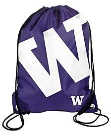 Washington Huskies Big Logo Drawstring Backpack