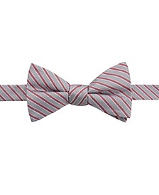 Men's Juniper Stripe Bow Tie