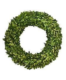 "24"" D Preserved Boxwood Wreath"
