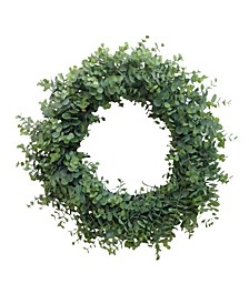 """20"""" D Baby Eucalyptus Wreath"""