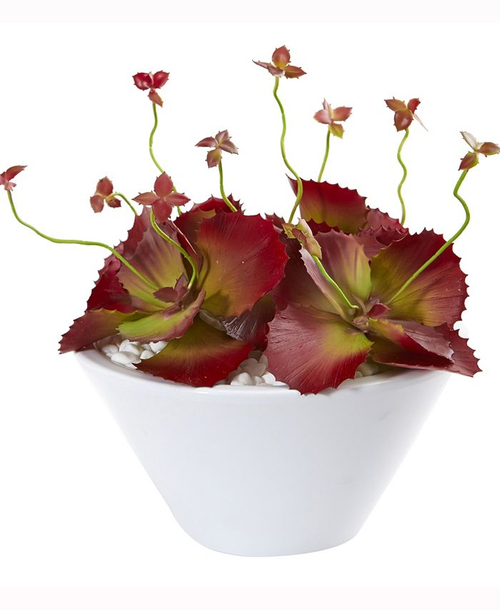 Nearly Natural - 10in. Succulent Artificial Plant in White Bowl