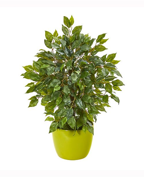 Nearly Natural 16in. Mini Ficus Artificial Tree in Green Planter