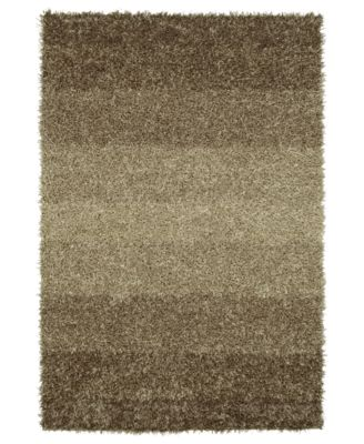 Metallics Shades Shag 9' x 13' Area Rug