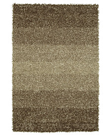 "Dalyn Metallics Shades Shag 3'6"" x 5'6"" Area Rug"