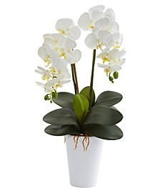 23in. Double Phalaenopsis Orchid Artificial Arrangement in Vase