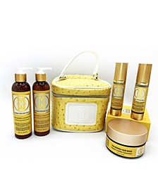 6-Piece Complete Natural Hair Thickening Repairing Set