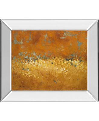 Flower Fields I by Lanie Loreth Mirror Framed Print Wall Art, 22