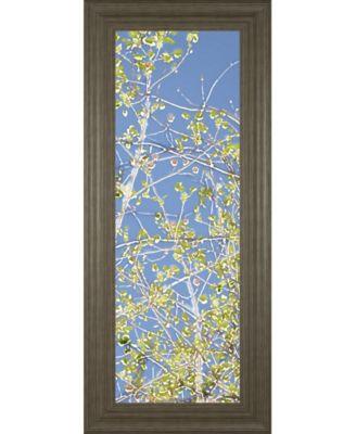 Spring Poplars Il by Sharon Chandler Framed Print Wall Art - 18